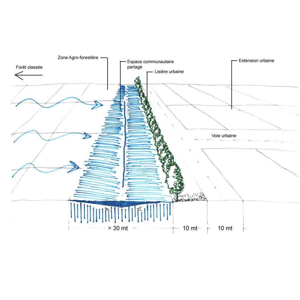 thies etude orizhome bassins inondables